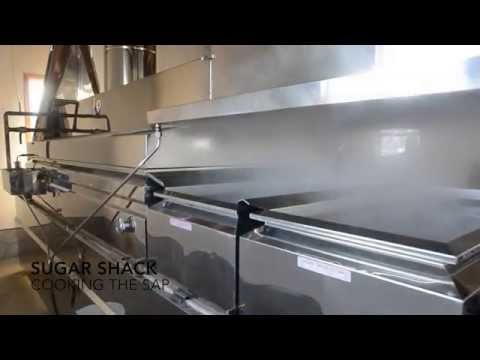 Maple Syrup Production in Huron County Michigan