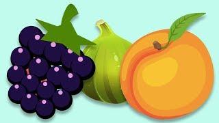 Meyveleri Tanıyalım - Küçük Çocuklar İçin Meyve İsimleri - Okul Öncesi Eğitim