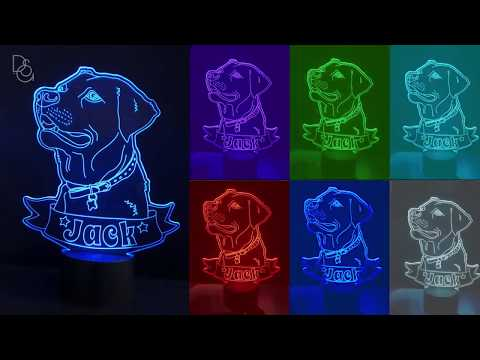 DS GLitter Gifts - Pet LED light( 7 light colors flashing in turn)