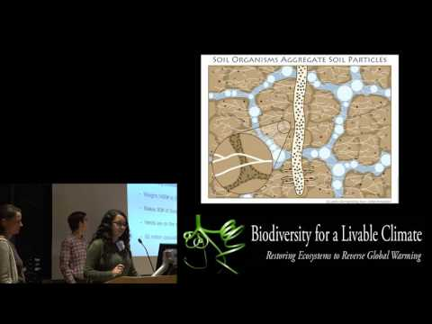 "Jim Laurie + His Homeschool AP Biology Students, ""Nature Wants to Be Wet"", October 17th"