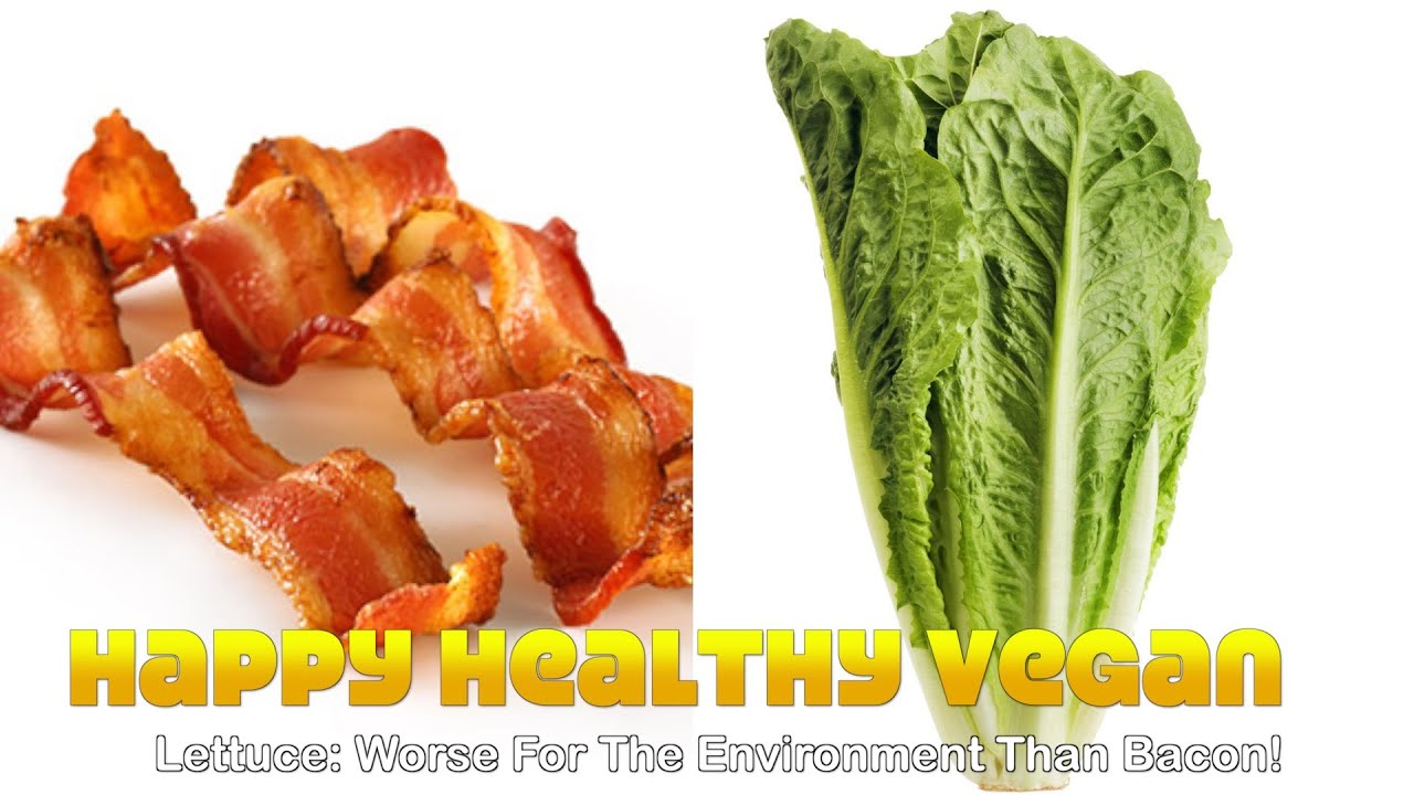 Lettuce: Worse For The Environment Than Bacon!