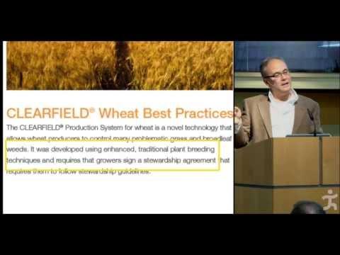 Hazards of Modern Wheat with Dr. Davis