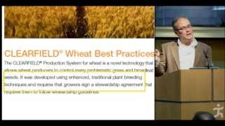 Hazards of Modern Wheat with Dr. Davis