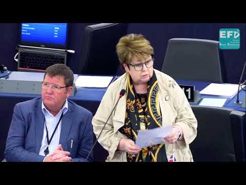 Return to barbarity in Burundi must be avoided - Margot Parker MEP