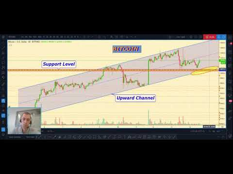 BITCOIN prediction, BITCOIN price analysis, Cryptocurrency Trading overview for 02.14.2020