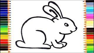как нарисовать Зайца. Раскраска Зайца для детей
