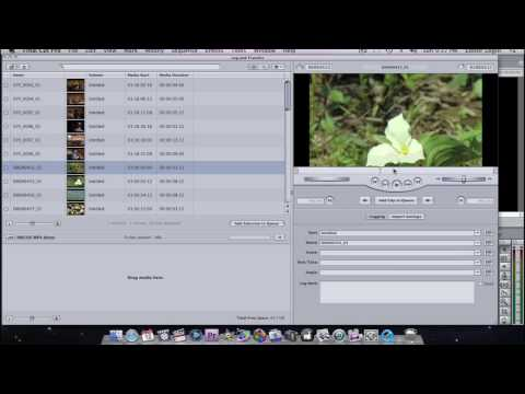 Tutorial: HM100/700, .MP4 & Final Cut Pro 6 or 7