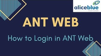 How to Login to ANT Web Trading Platform  Alice Blue Software Process