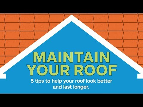 5-roof-maintenance-tips