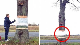 15 Amazing Street Art That Is At Another Level
