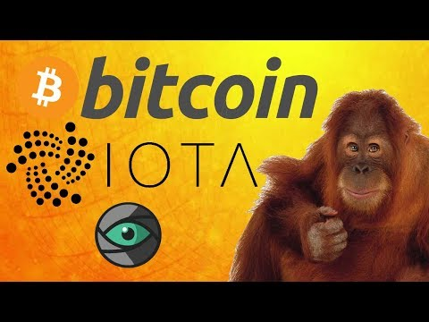 Bitcoin and Crypto Chat 11/12