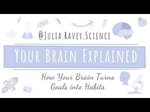 How Your Brain Turns Your Goals into Habits