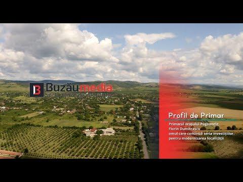 Profil de primar - orașul Pogoanele