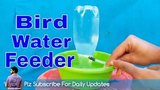 पंछियों को दे  गरमियों का तोहफ़ा /How to Make Automatic Bird Water Feeder / Mammal Bonsai