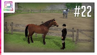 Riding Academy 2 (part 22) (Horse Game)