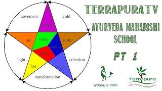La medicina Ayurvedica (Ayurveda Maharishi School) (part 1)