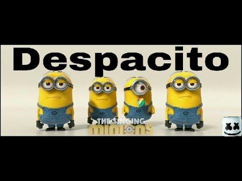 Despacito Minion version