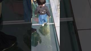 Baby steps at Oryukdo Skywalk