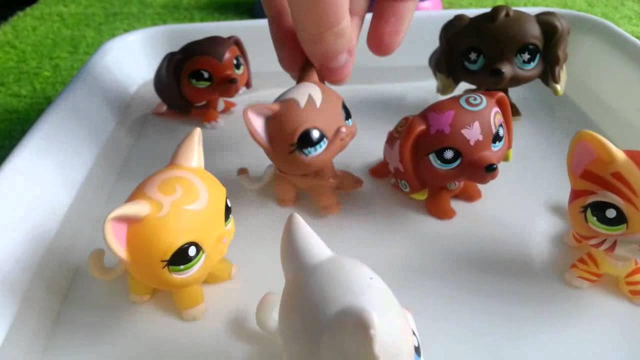 Lps Zakręceni 16 Littlest Pet Shop Funnycat Tv