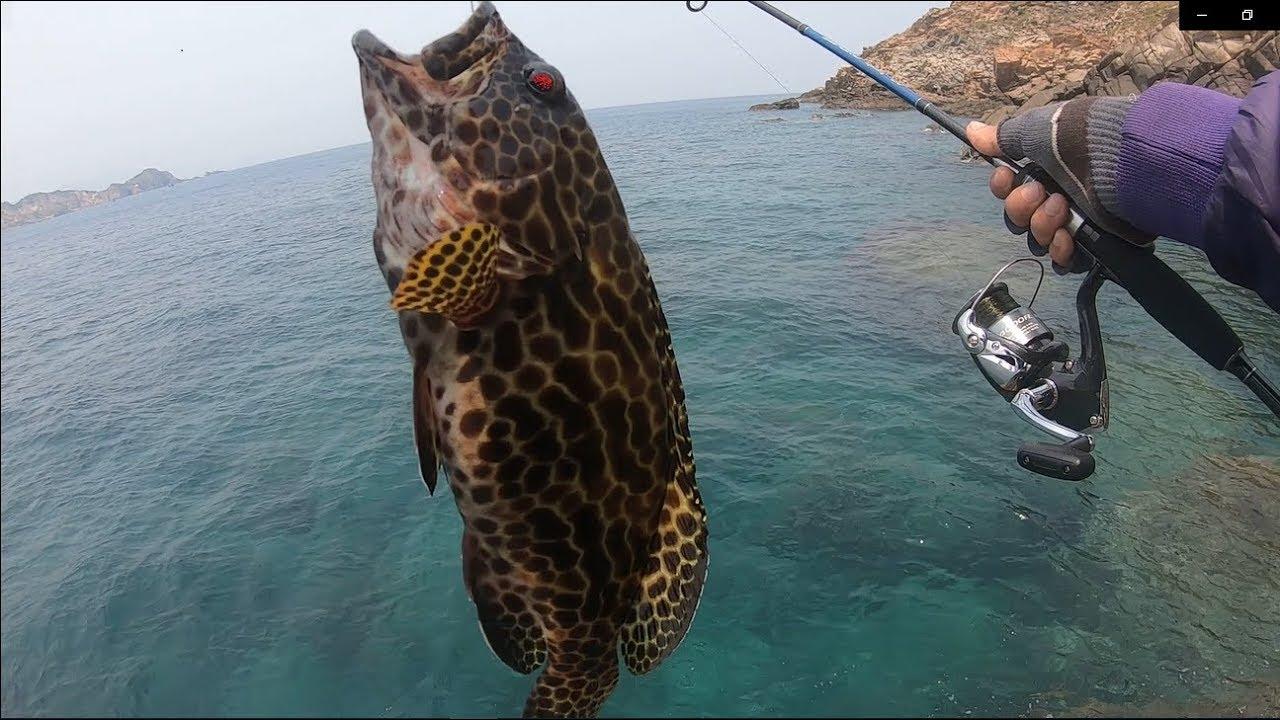 Câu Cá Biển | Câu Cá Mú, Mó cùng cảnh đẹp Hòn Sẹo – Nhơn Lý | fishing grouper