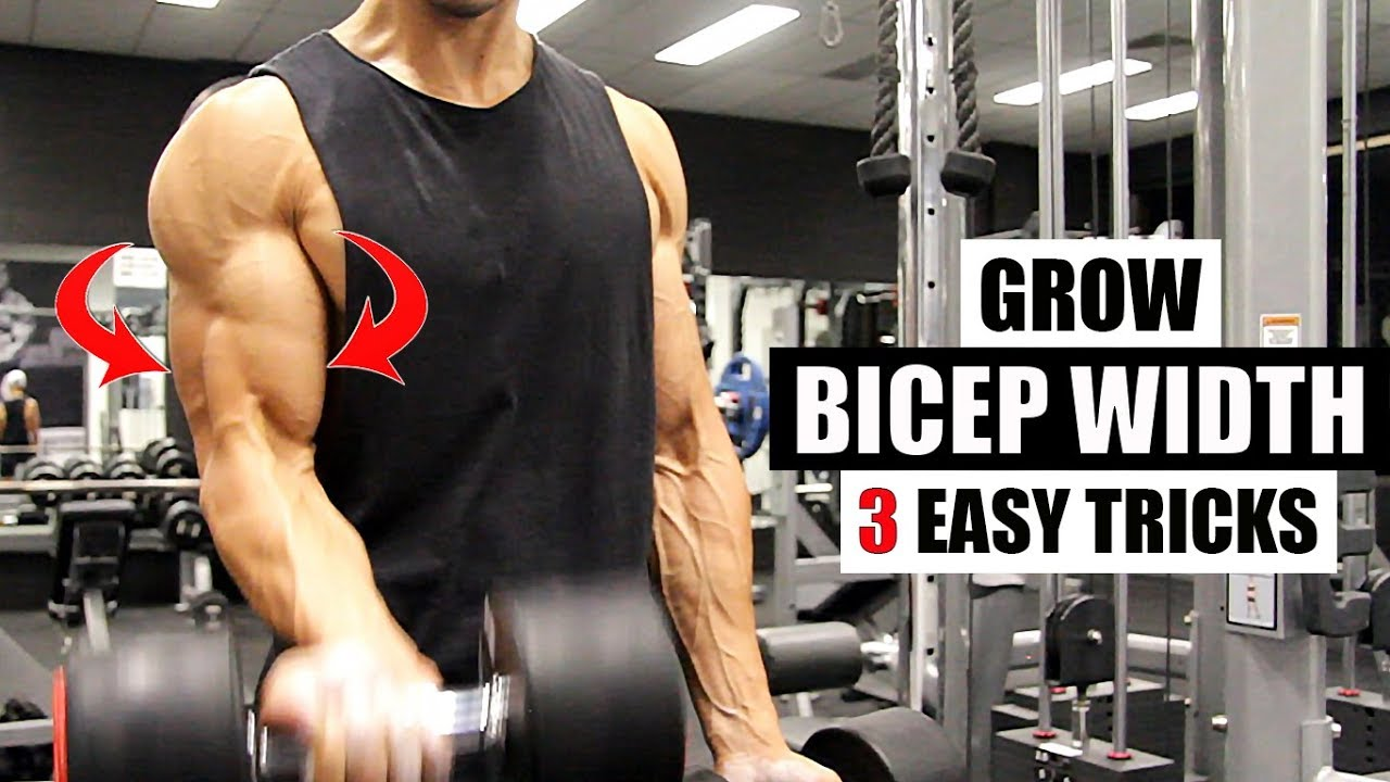 BICEP WIDTH- This is how I get 3 dimensional biceps [3 ...