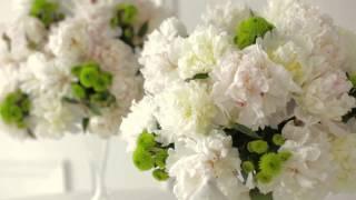 Новая коллекция от дизайнера свадебной моды Ирины Котапской