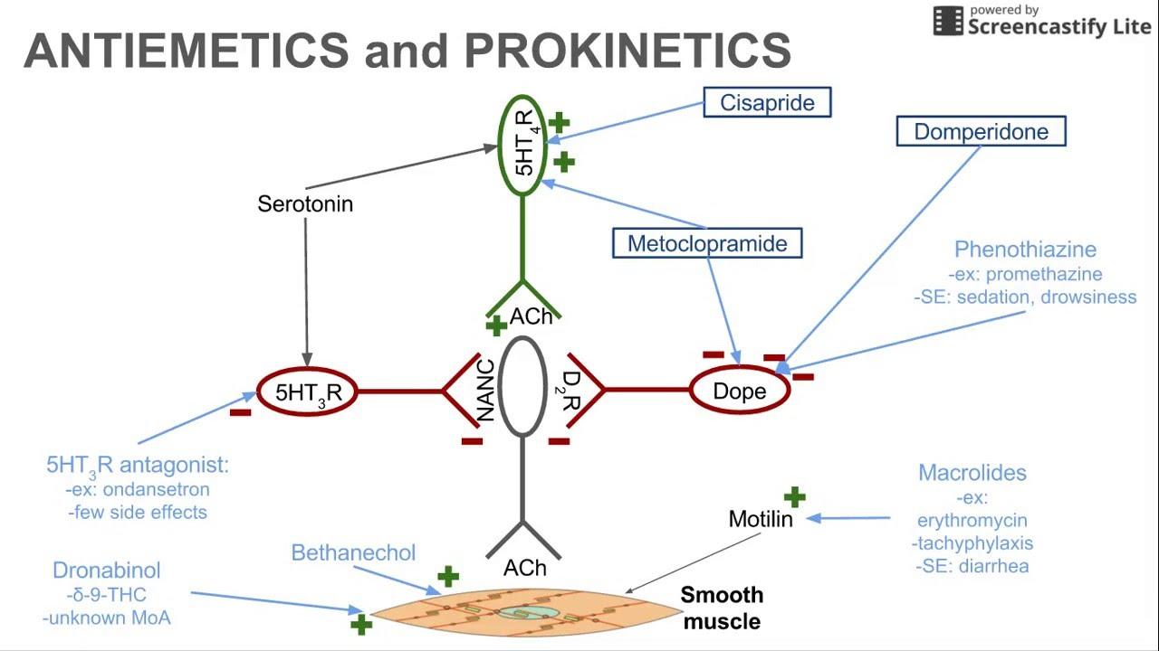 Antiemetics and Prokinetics - YouTube