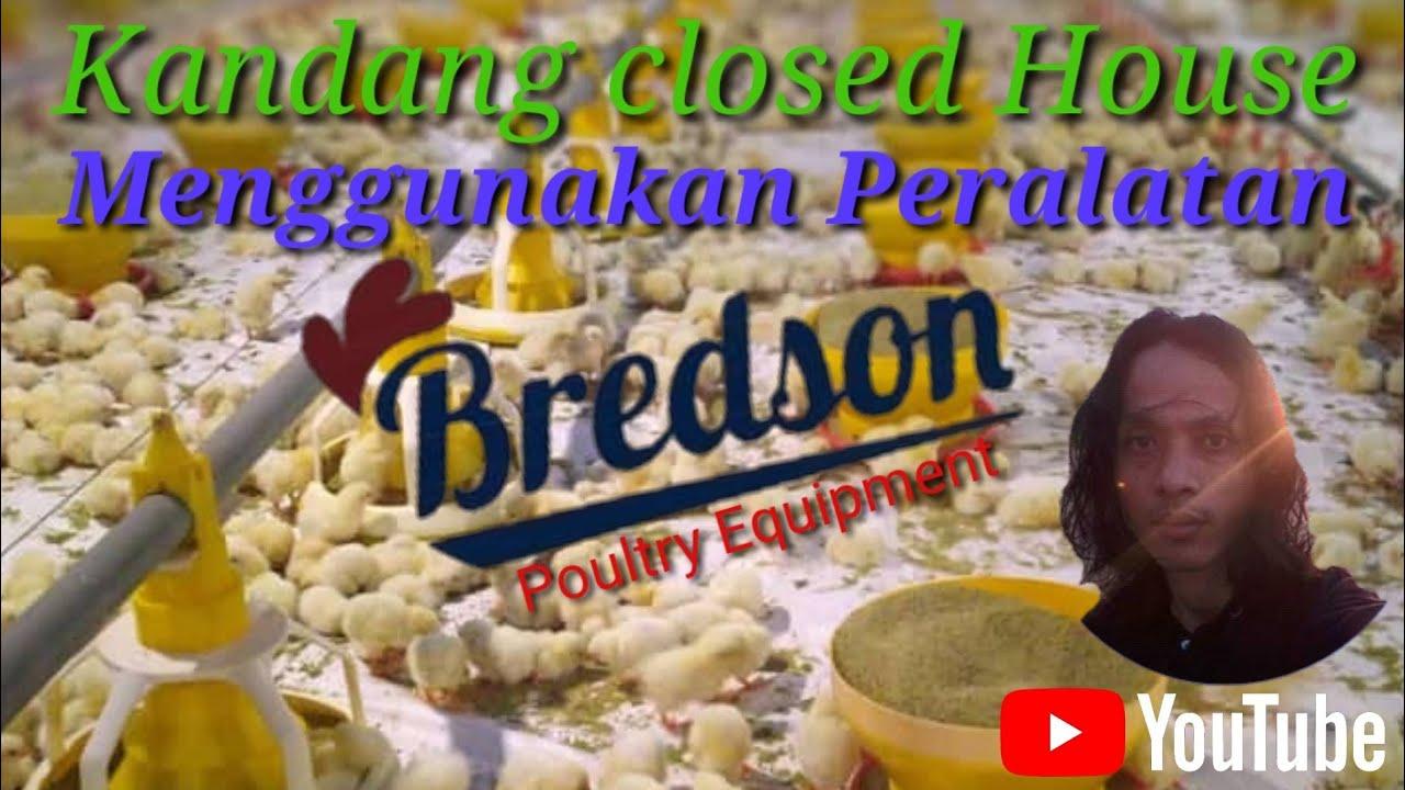 Kandang closed House - YouTube