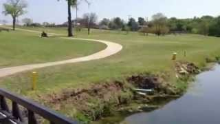 Morris Williams Golf Course Austin Tx
