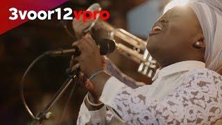 Daymé Arocena - 3voor12 Session | Motel Mozaïque 2017