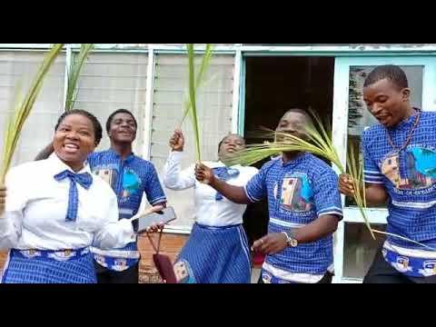 Download Timtame Mwana wa Davide
