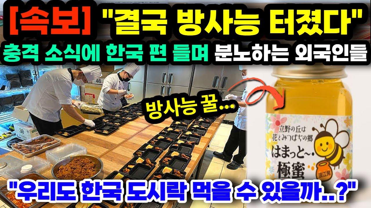 """[단독해외반응] """"결국 방사능 터졌다"""" 충격 소식에 외국인들이 한국 편 들며 분노하는 충격적인 이유 // """"우리도 한국 도시락을 먹을 수 있을까요?"""""""
