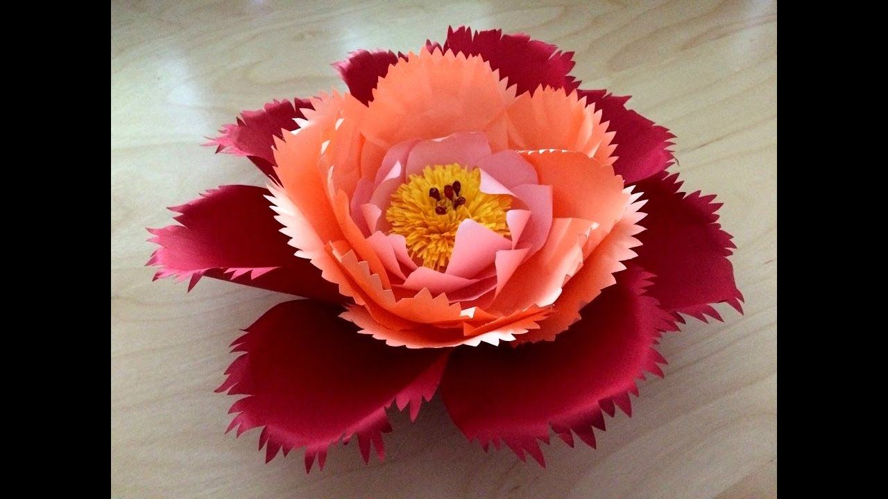 Paper flower for wedding decoration paper flowers backdrop paper flower for wedding decoration paper flowers backdrop decoration papierenbloemen youtube junglespirit Image collections