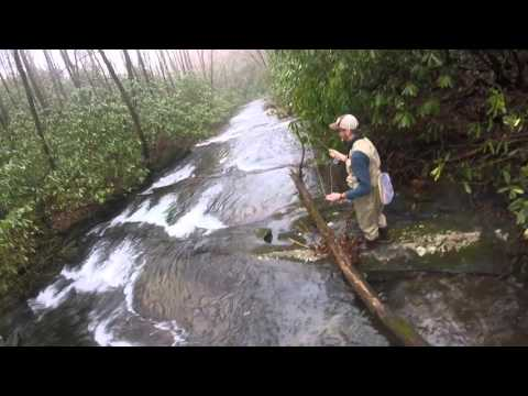 Tellico River Fly Fishing