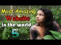 [Hindi] 5 अदभुत वेबसाइट जिनके बारे में आप नहीं जानते-5 Most Amazing Cool Websites,You Didn't Know !!