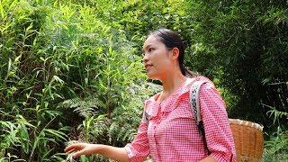 【南方小蓉】漂亮女子獨自穿越草地,深山裏發現一間茅草屋,決定在這裏隱居並生活下去