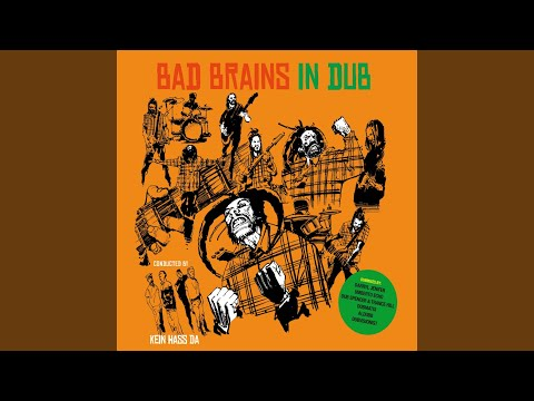 The Meek Shall Inherit the Earth (Dubvisionist Dub Remix) mp3