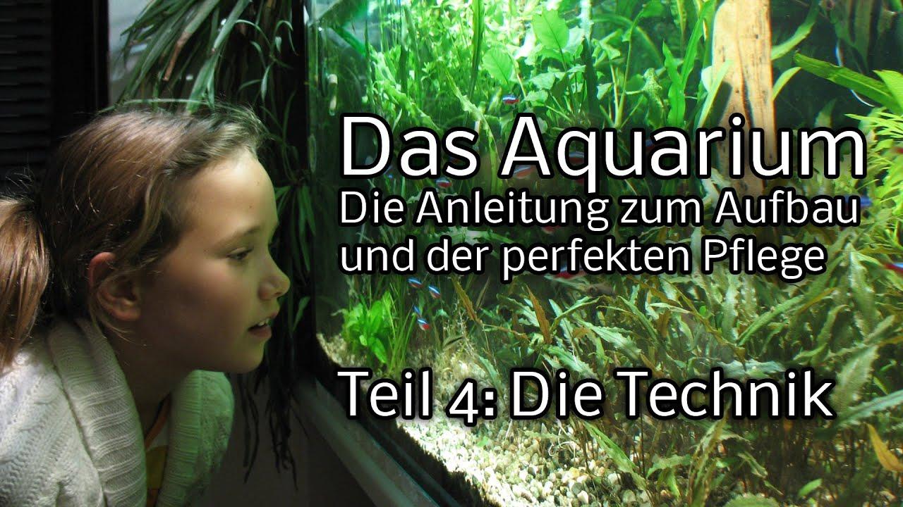 Das Aquarium   Die Anleitung zum Aufbau und Pflege  Teil 4  Technik   YouTube