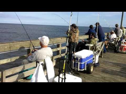 10-14-16 - Seaview Fishing Pier - Fishing Report