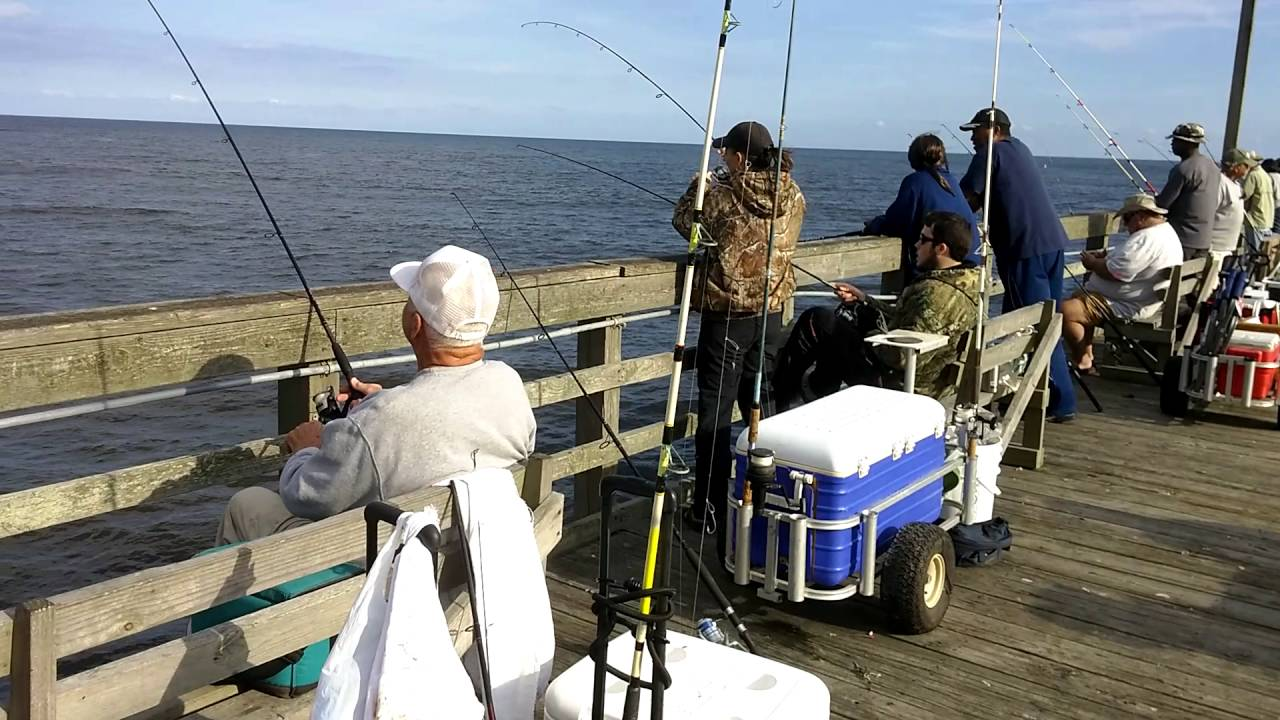 10 14 16 seaview fishing pier fishing report youtube for Seaview fishing pier