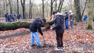Tree Planting #2013Recap