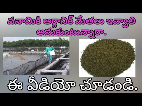 how to use organic feed for vannami
