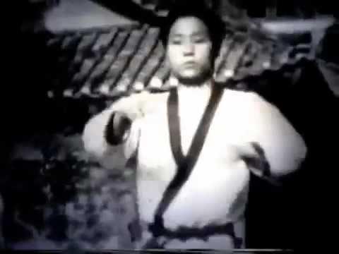 Hwang Kee - Soo Bak Do - Moo Duk Kwan - Tang Soo Do