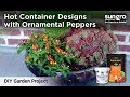 DIY Fall Container Designs with Ornamental Peppers
