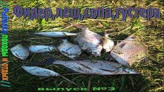 Рыбалка на мокше с фидером в ночь Ловля лещей ,сопы,густеры,плотвы / Хороший утренний клёв