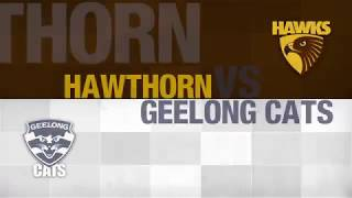 AFL Evolution (PS4) Hawthorn vs Geelong (2018 round 21)