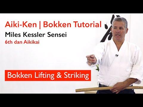 Aikido Bokken Basics: Lifting & Striking