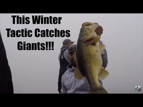 Winter Bass Fishing: Lipless Crankbait Tips