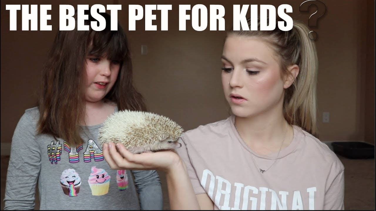 THE BEST PET FOR KIDS