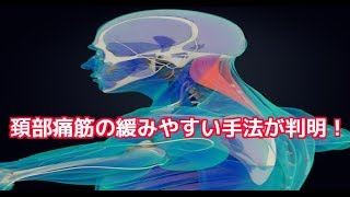 筋膜はがし 筋膜リリース 頸部痛筋の緩みやすい手法が判明!